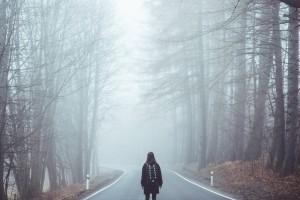 fog-1208283_1280